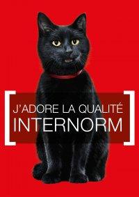 Changement de fenêtres INTERNORM, MORBIER Les Marais (2013)
